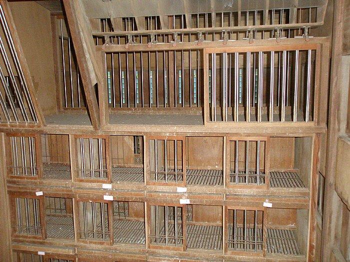 鸽舍12x16˙˙本身橱10呎˙太阳橱6呎˙˙木材优˙结构完整˙屋顶实木
